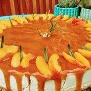 veganer aprikosen rohkostkuchen