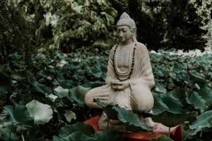Buddha, Einstein & Co.: berühmte Vegetarier