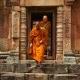 Veganismus & Brahmanismus